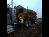 Logging jobs, log trucker, CDL TRUCK DRIVER Wanted, Western Washington