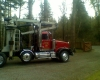 TIMBER LOGGING TREES PACIFIC NORTHWEST LOGGERS, Seattle, Tacoma, King, Snohomish, Kitsap